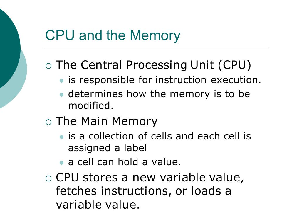 CPU and the Memory  The Central Processing Unit (CPU) is responsible for instruction execution.