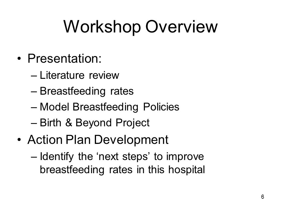 Workshop Overview Presentation: –Literature review –Breastfeeding rates –Model Breastfeeding Policies –Birth & Beyond Project Action Plan Development –Identify the 'next steps' to improve breastfeeding rates in this hospital 6