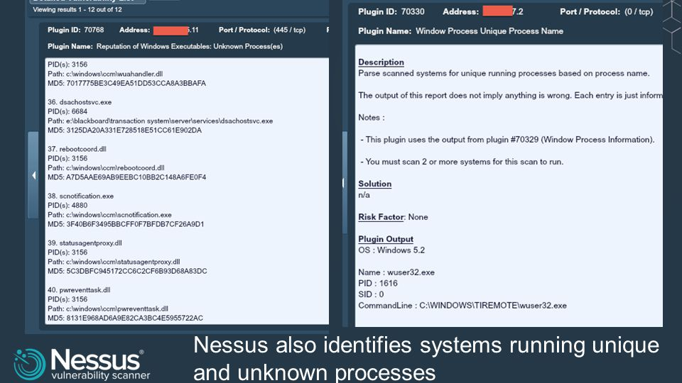 Nessus also identifies systems running unique and unknown processes