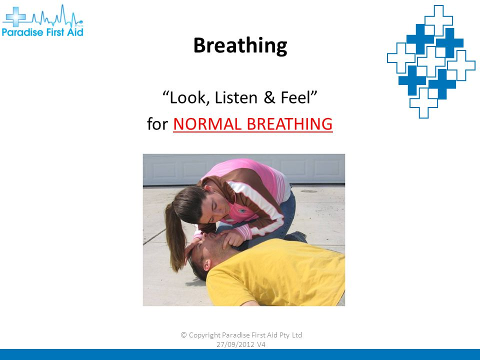 Breathing Look, Listen & Feel for NORMAL BREATHING © Copyright Paradise First Aid Pty Ltd 27/09/2012 V4