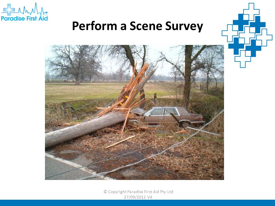 Perform a Scene Survey
