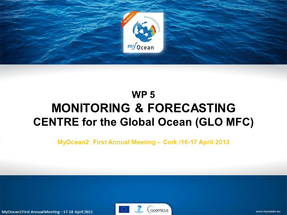 MyOcean2 First Annual Meeting – April 2013 WP 5 MONITORING & FORECASTING CENTRE for the Global Ocean (GLO MFC) MyOcean2 First Annual Meeting – Cork /16-17 April 2013