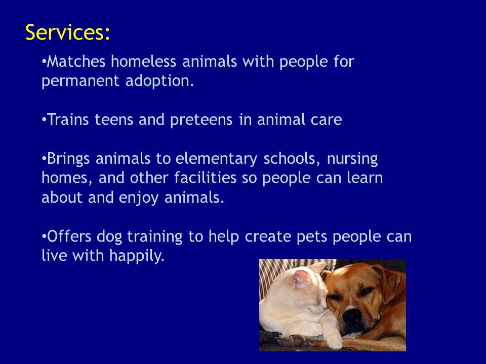 Services: Matches homeless animals with people for permanent adoption.