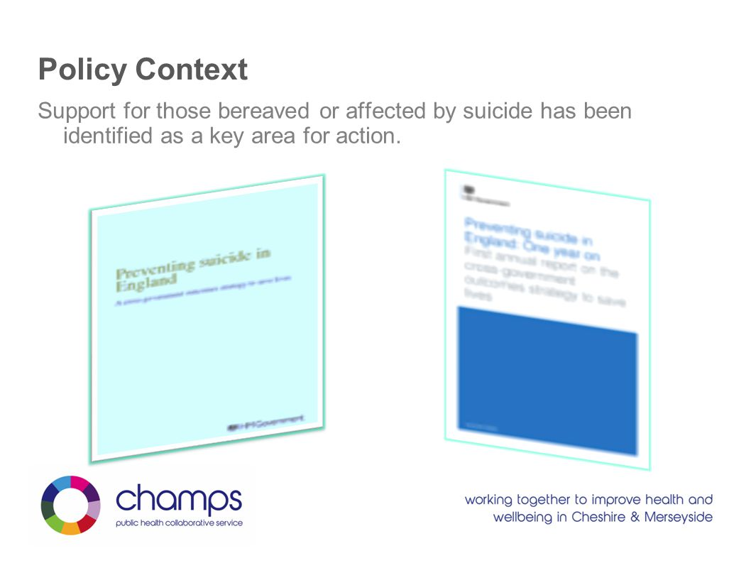 Support for those bereaved or affected by suicide has been identified as a key area for action.