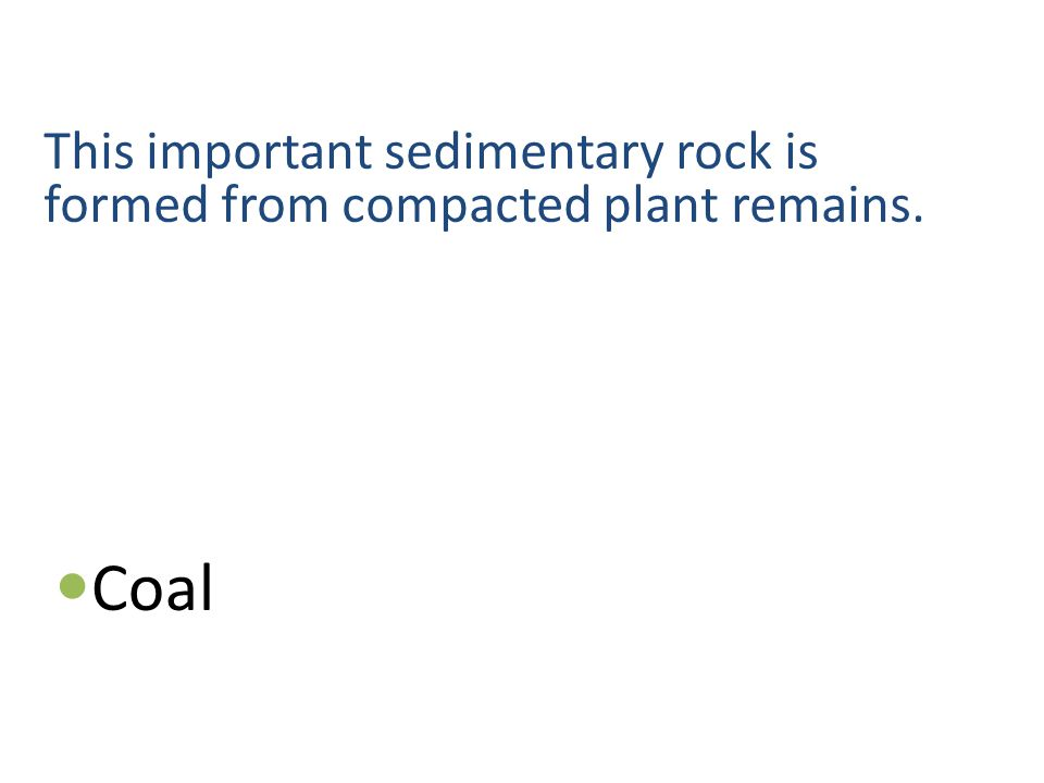 This important sedimentary rock is formed from compacted plant remains. Coal