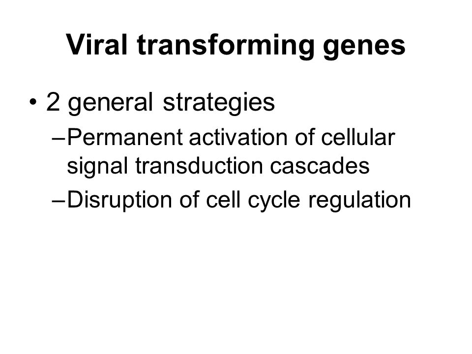 Viral transforming genes 2 general strategies –Permanent activation of cellular signal transduction cascades –Disruption of cell cycle regulation