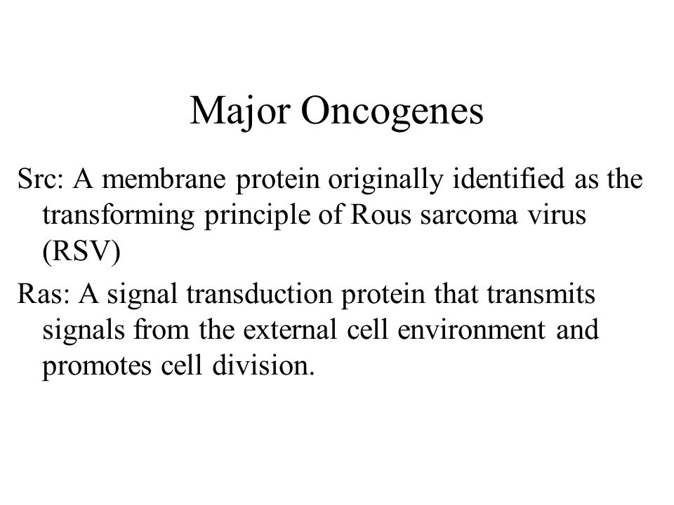 Major Oncogenes Src: A membrane protein originally identified as the transforming principle of Rous sarcoma virus (RSV) Ras: A signal transduction protein that transmits signals from the external cell environment and promotes cell division.