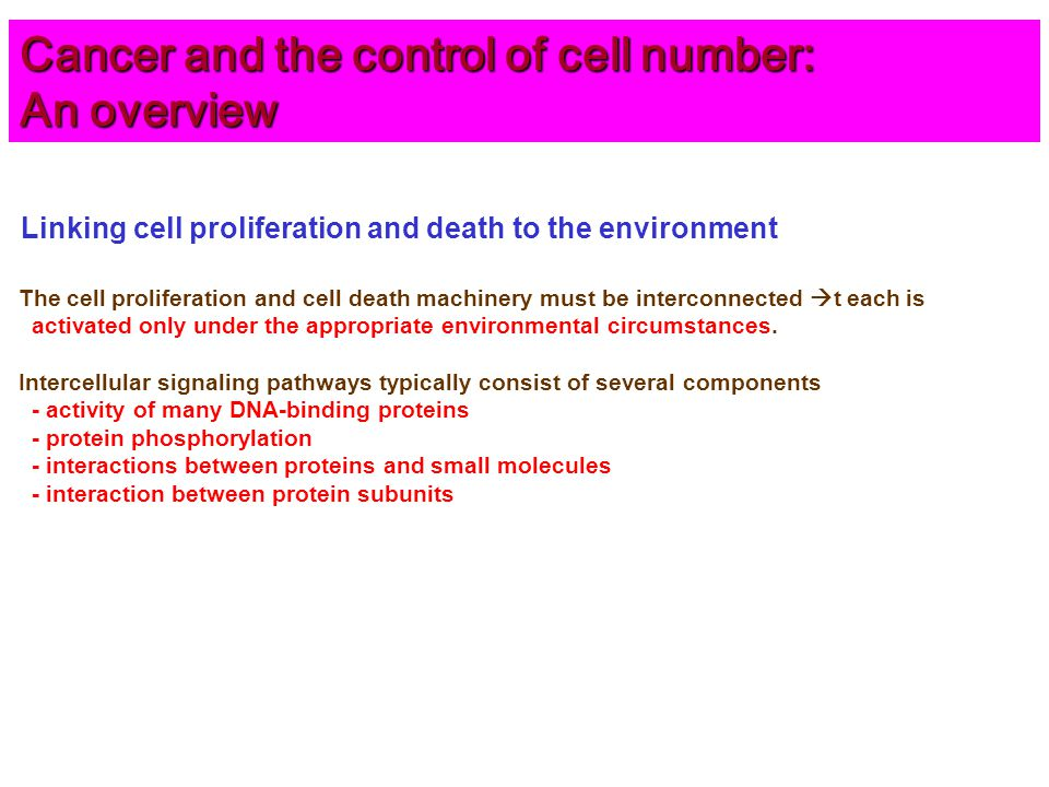 Linking cell proliferation and death to the environment The cell proliferation and cell death machinery must be interconnected  t each is activated only under the appropriate environmental circumstances.