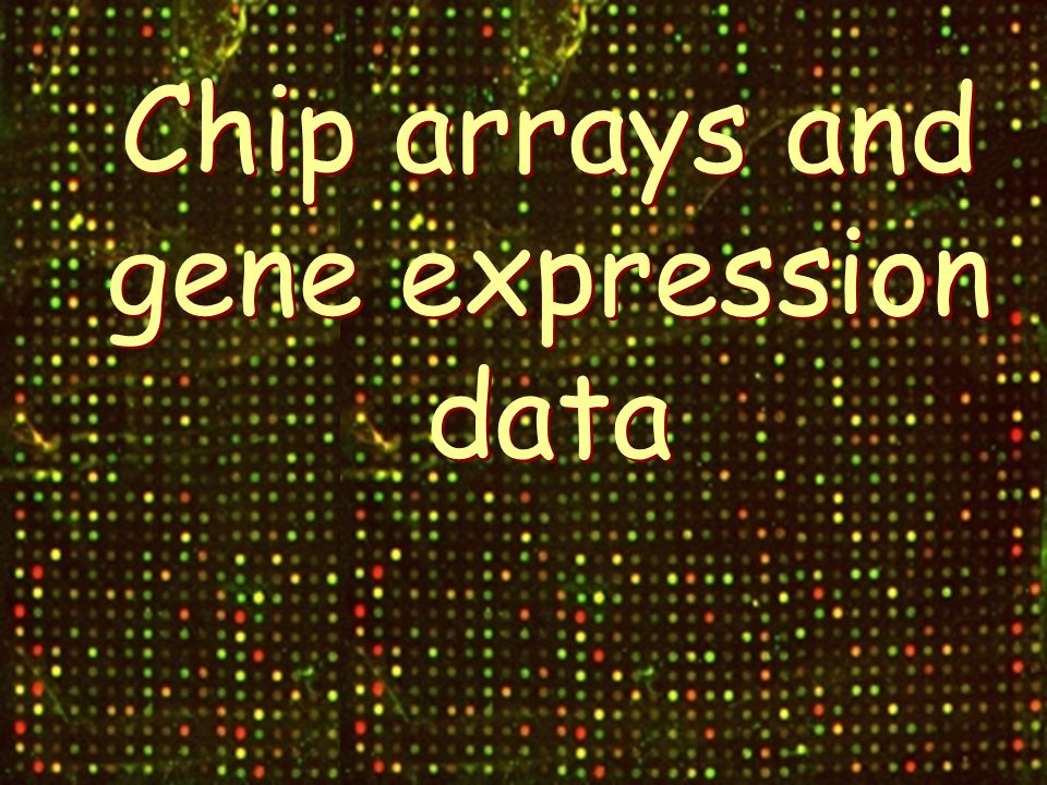 Chip arrays and gene expression data