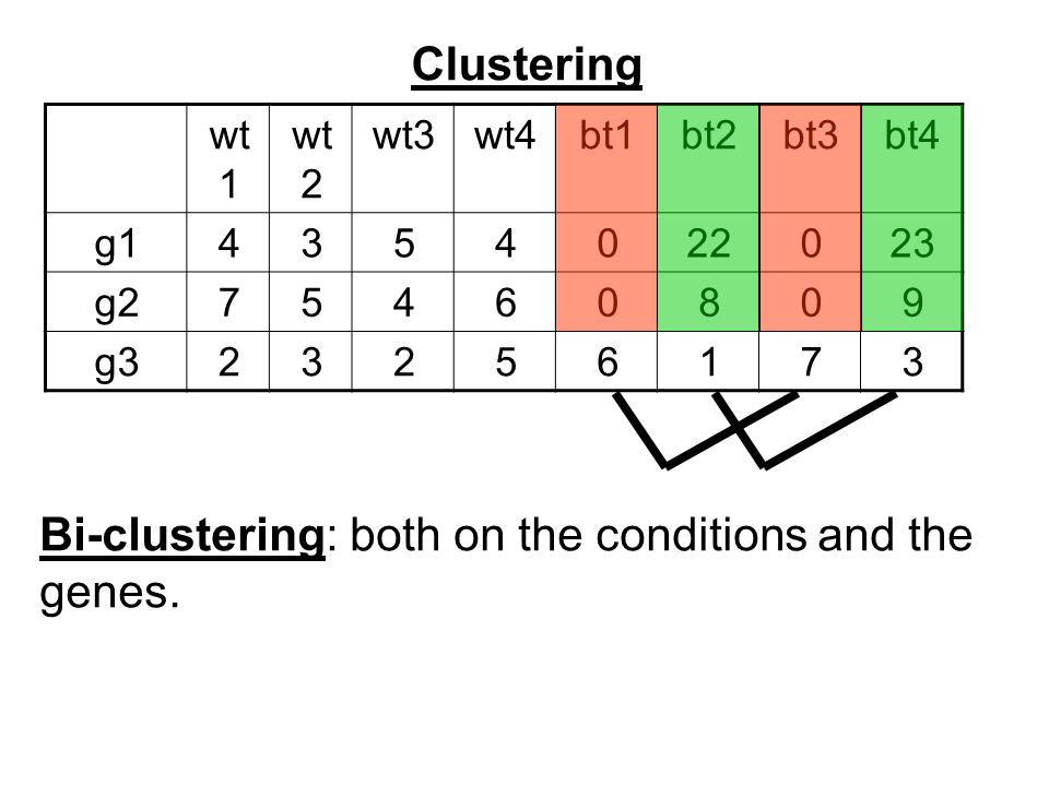 Clustering bt4bt3bt2bt1wt4wt3wt 2 wt 1 2302204534g1 90806457g2 37165232g3 Bi-clustering: both on the conditions and the genes.