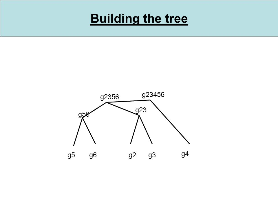 Building the tree g5g6 g56 g2g3 g2356 g23 g4 g23456