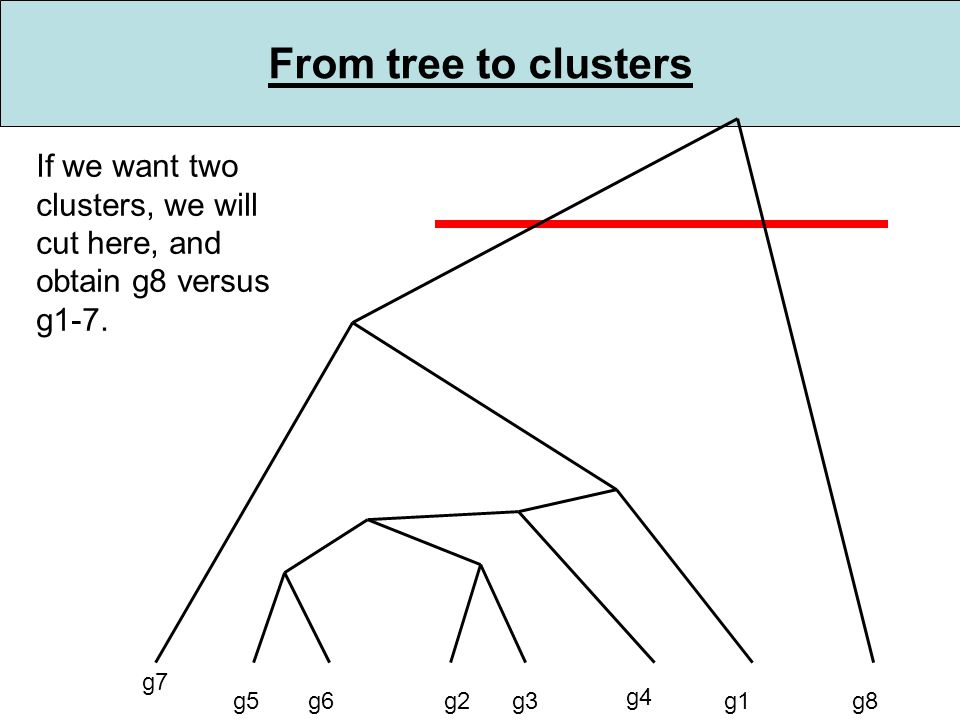From tree to clusters g5g6g2g3 g4 g1 g7 g8 If we want two clusters, we will cut here, and obtain g8 versus g1-7.