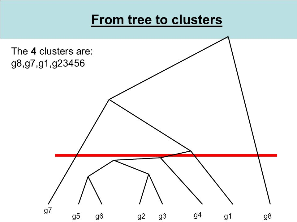 From tree to clusters g5g6g2g3 g4 g1 g7 g8 The 4 clusters are: g8,g7,g1,g23456