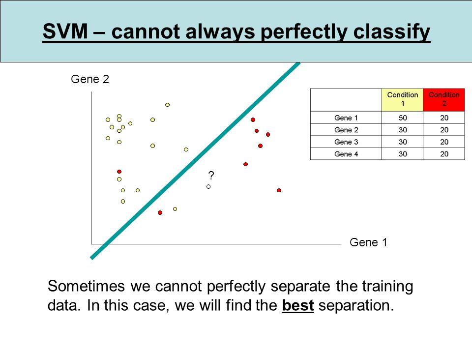 Gene 1 Gene 2 . Sometimes we cannot perfectly separate the training data.