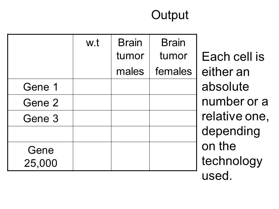 Output Brain tumor females Brain tumor males w.t Gene 1 Gene 2 Gene 3 Gene 25,000 Each cell is either an absolute number or a relative one, depending on the technology used.