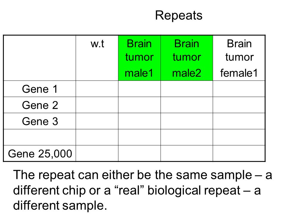 Repeats Brain tumor female1 Brain tumor male2 Brain tumor male1 w.t Gene 1 Gene 2 Gene 3 Gene 25,000 The repeat can either be the same sample – a different chip or a real biological repeat – a different sample.