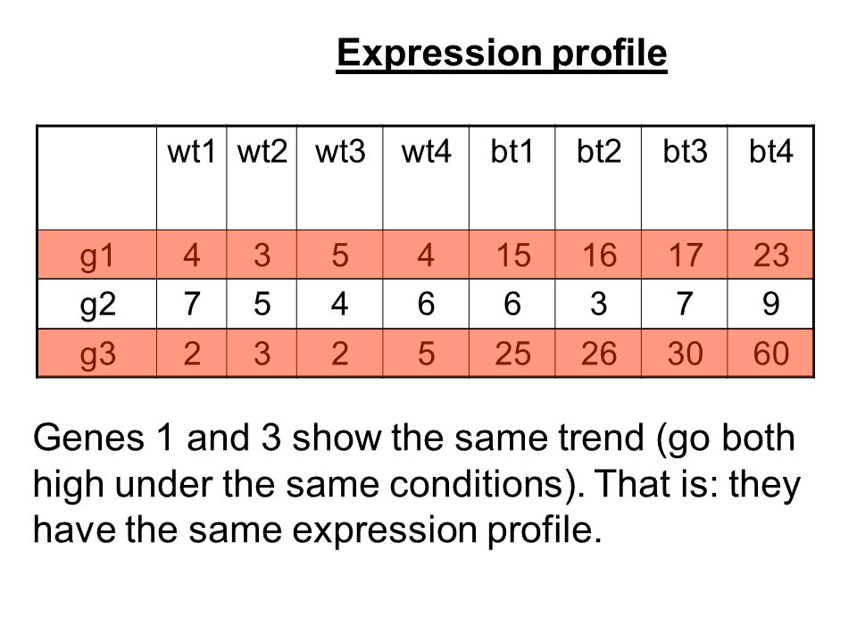 Expression profile bt4bt3bt2bt1wt4wt3wt2wt1 231716154534g1 97366457g2 603026255232g3 Genes 1 and 3 show the same trend (go both high under the same conditions).