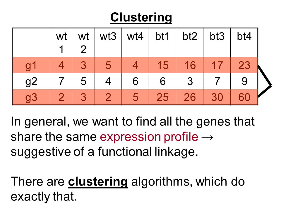 Clustering bt4bt3bt2bt1wt4wt3wt 2 wt 1 231716154534g1 97366457g2 603026255232g3 In general, we want to find all the genes that share the same expression profile → suggestive of a functional linkage.