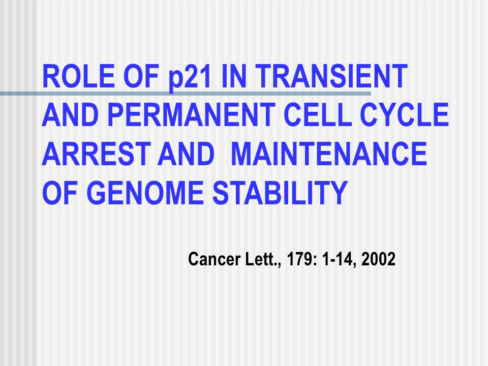 ROLE OF p21 IN TRANSIENT AND PERMANENT CELL CYCLE ARREST AND MAINTENANCE OF GENOME STABILITY Cancer Lett., 179: 1-14, 2002