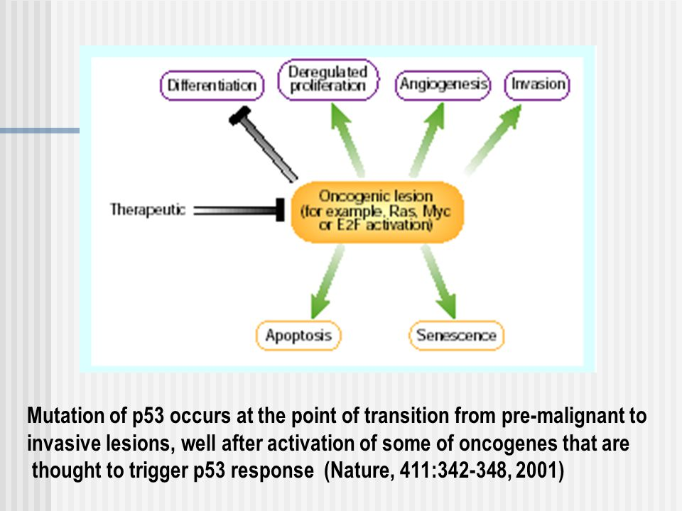Mutation of p53 occurs at the point of transition from pre-malignant to invasive lesions, well after activation of some of oncogenes that are thought to trigger p53 response (Nature, 411:342-348, 2001)