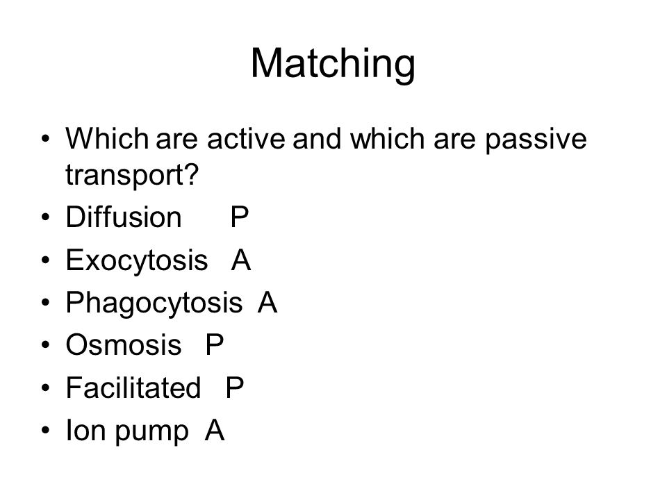 Matching Which are active and which are passive transport.