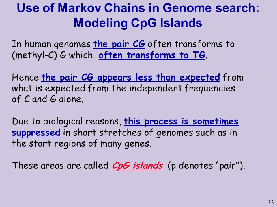 23 Use of Markov Chains in Genome search: Modeling CpG Islands In human genomes the pair CG often transforms to (methyl-C) G which often transforms to TG.