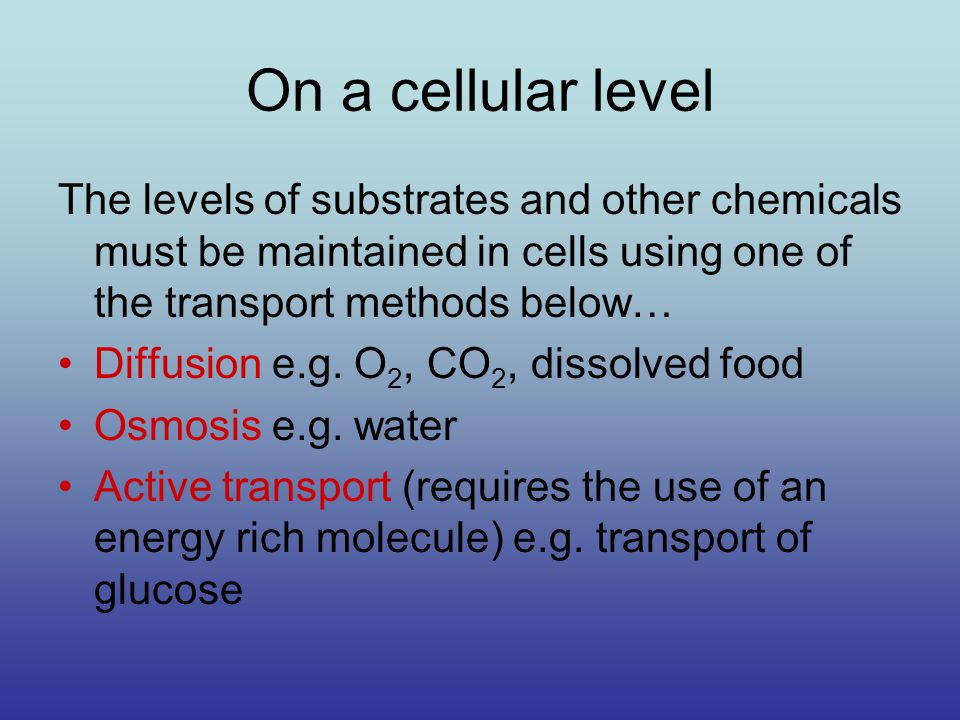 On a cellular level The levels of substrates and other chemicals must be maintained in cells using one of the transport methods below… Diffusion e.g.