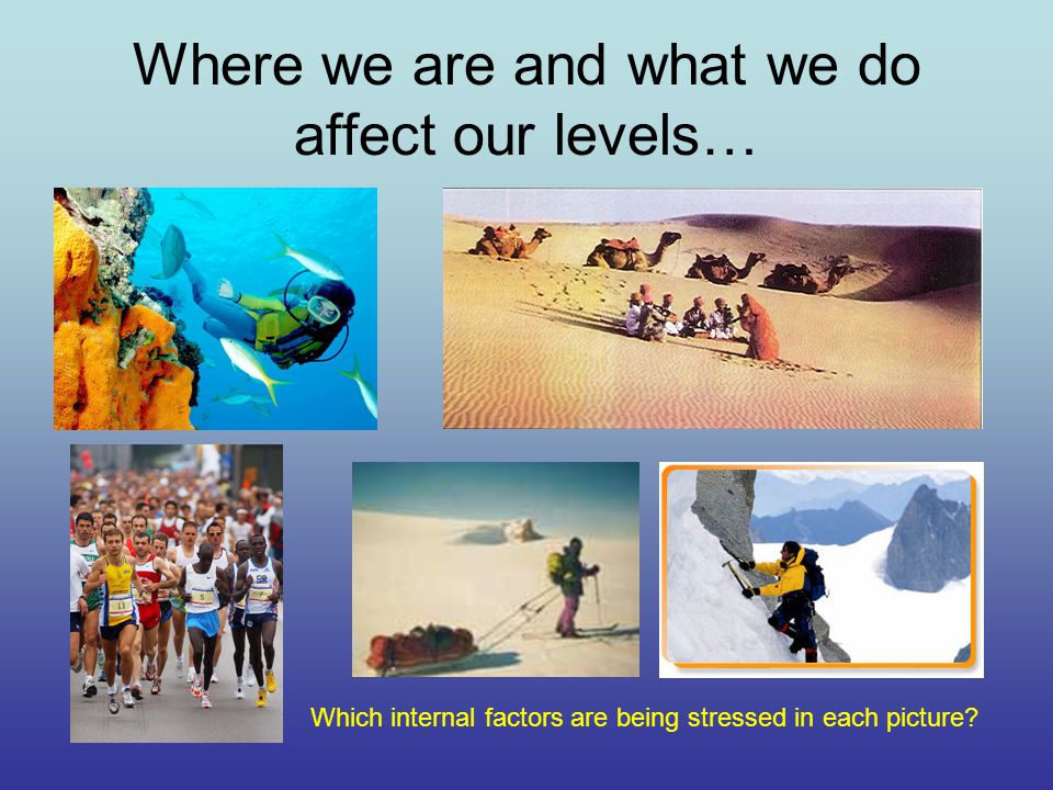 Where we are and what we do affect our levels… Which internal factors are being stressed in each picture