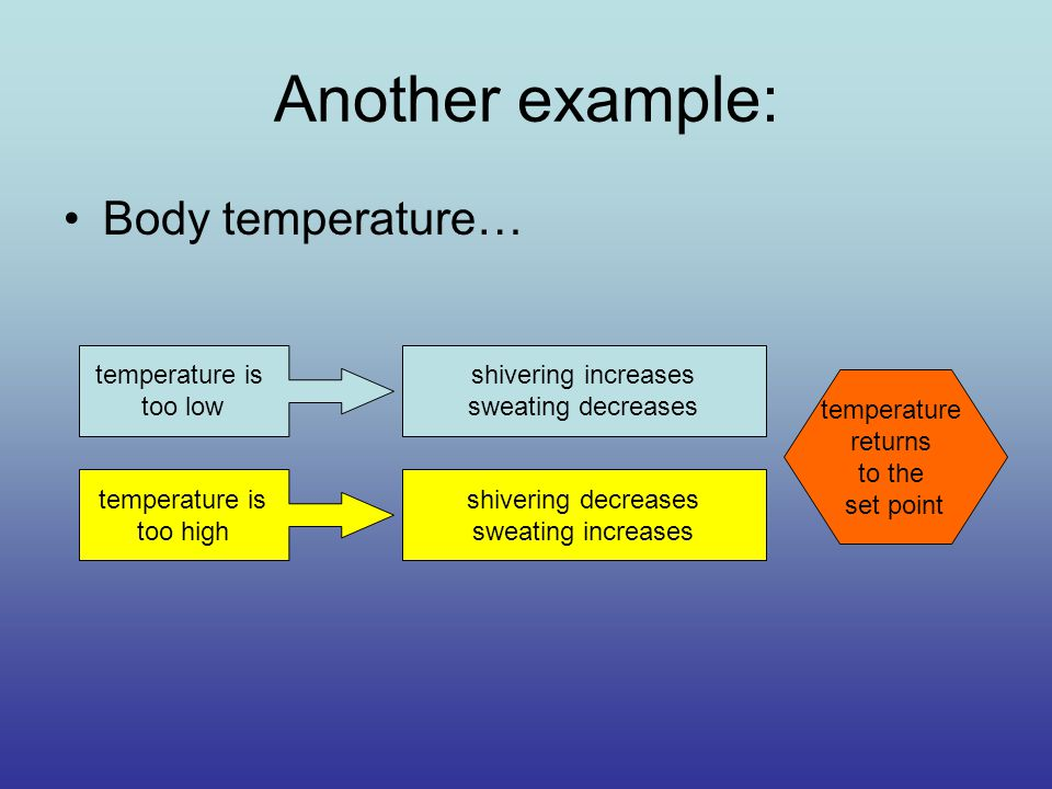 Another example: Body temperature… temperature is too low temperature is too high shivering increases sweating decreases shivering decreases sweating increases temperature returns to the set point