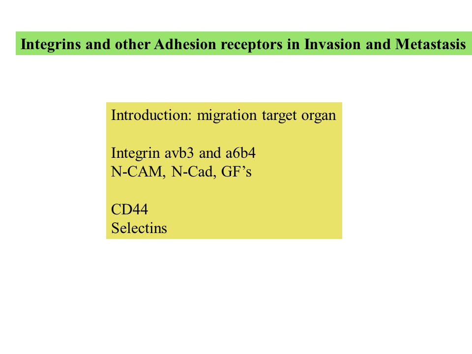 Integrins and other Adhesion receptors in Invasion and Metastasis Introduction: migration target organ Integrin avb3 and a6b4 N-CAM, N-Cad, GF's CD44 Selectins