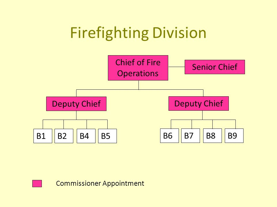 Firefighting Division Commissioner Appointment Chief of Fire Operations Senior Chief Deputy Chief B1B2B4B5 B6B7B8B9