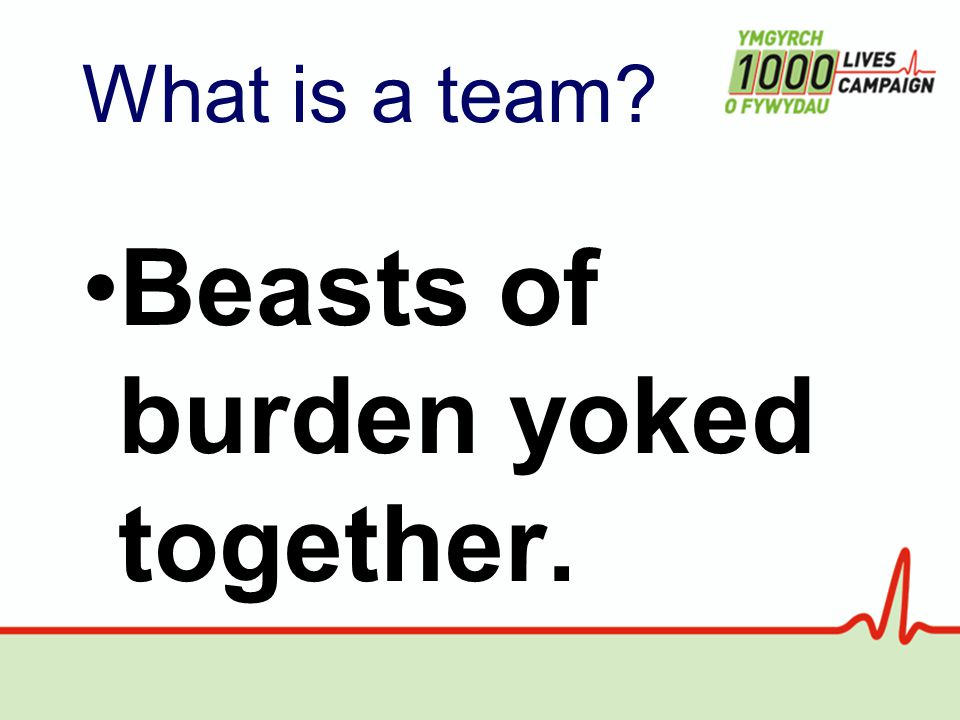 What is a team Beasts of burden yoked together.