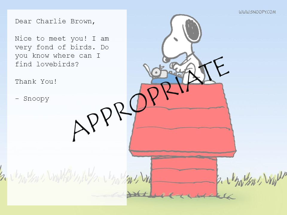 Dear Charlie Brown, Nice to meet you. I am very fond of birds.