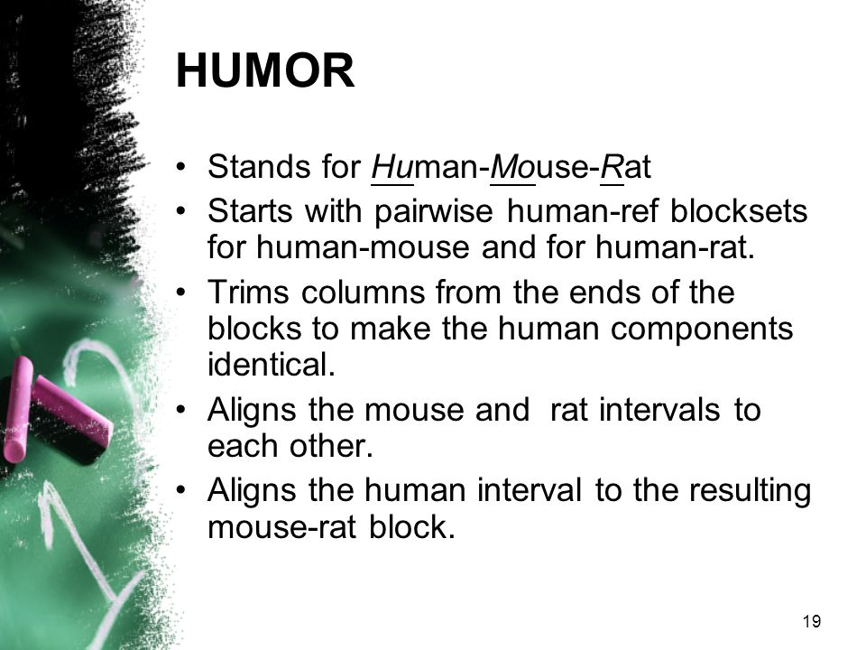 19 HUMOR Stands for Human-Mouse-Rat Starts with pairwise human-ref blocksets for human-mouse and for human-rat.