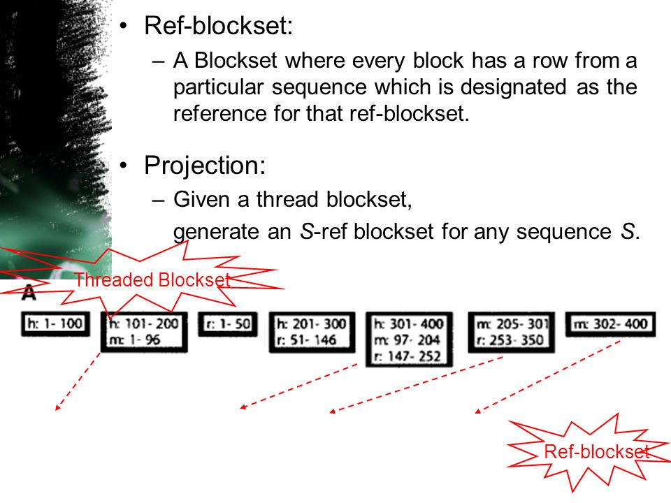 9 Ref-blockset: –A Blockset where every block has a row from a particular sequence which is designated as the reference for that ref-blockset.