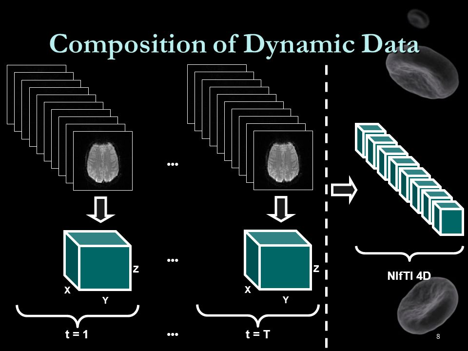 8 Composition of Dynamic Data X Y Z t = 1 X Y Z t = T NIfTI 4D