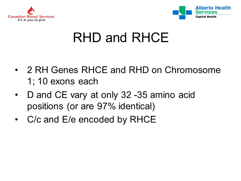RHD and RHCE 2 RH Genes RHCE and RHD on Chromosome 1; 10 exons each D and CE vary at only 32 -35 amino acid positions (or are 97% identical) C/c and E/e encoded by RHCE
