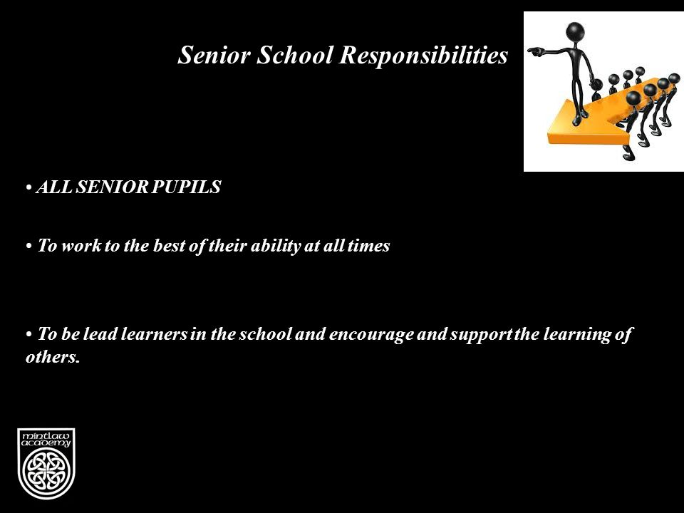 Vision Senior School Responsibilities To be lead learners in the school and encourage and support the learning of others.