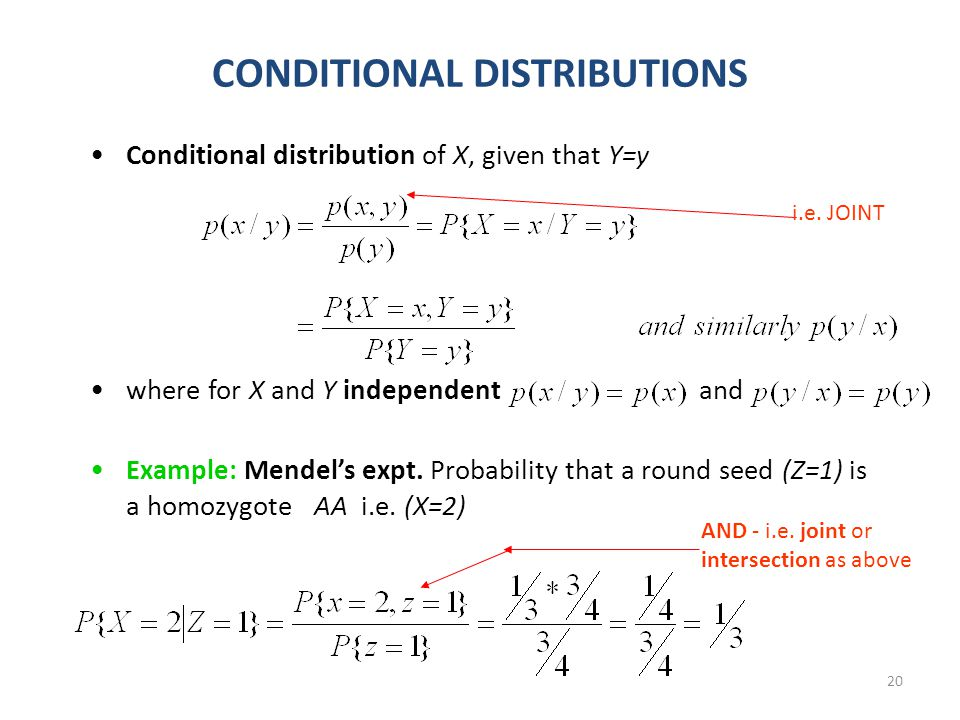 20 CONDITIONAL DISTRIBUTIONS Conditional distribution of X, given that Y=y where for X and Y independent and Example: Mendel's expt.