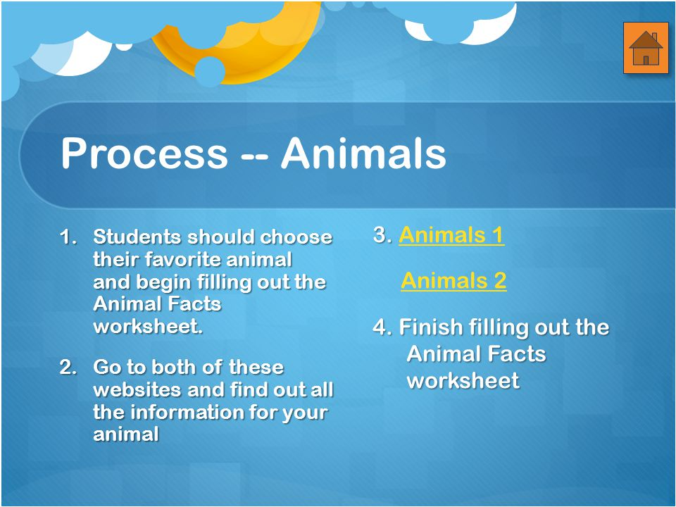 Process -- Animals 1.Students should choose their favorite animal and begin filling out the Animal Facts worksheet.