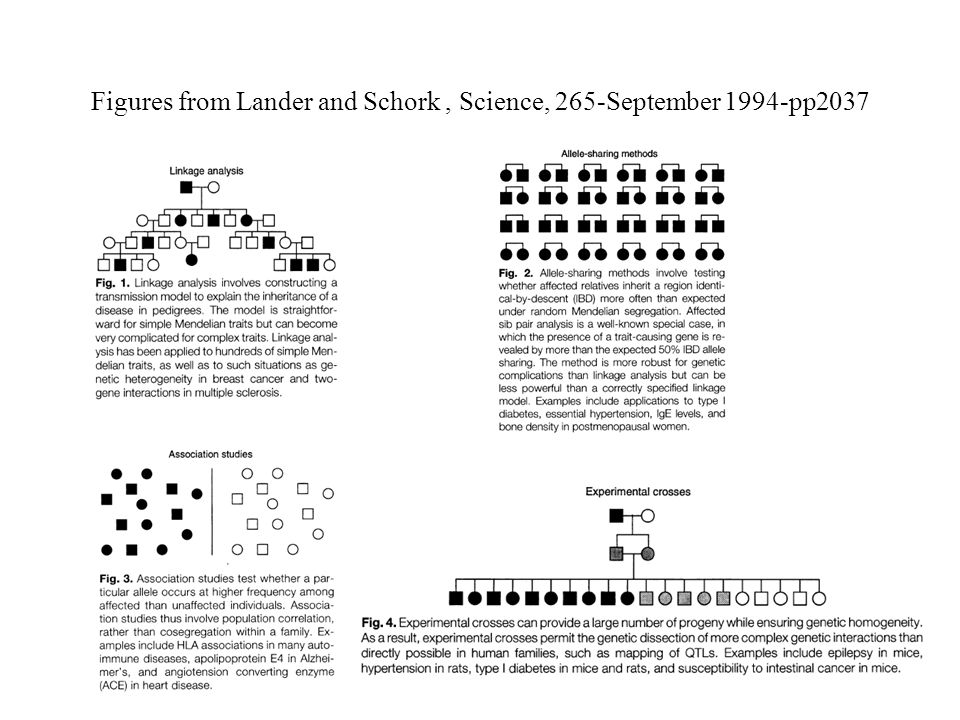 Figures from Lander and Schork, Science, 265-September 1994-pp2037