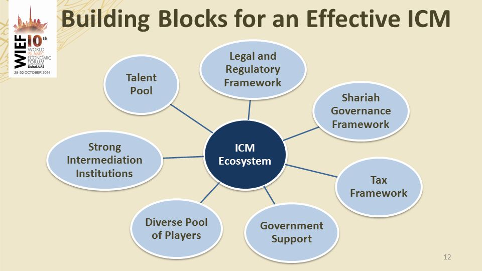 Building Blocks for an Effective ICM 12 ICM Ecosystem Legal and Regulatory Framework Shariah Governance Framework Tax Framework Government Support Diverse Pool of Players Strong Intermediation Institutions Talent Pool