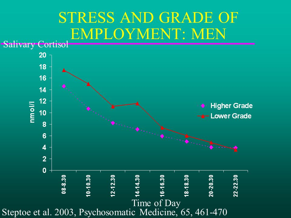 STRESS AND GRADE OF EMPLOYMENT: MEN Salivary Cortisol Time of Day Steptoe et al.