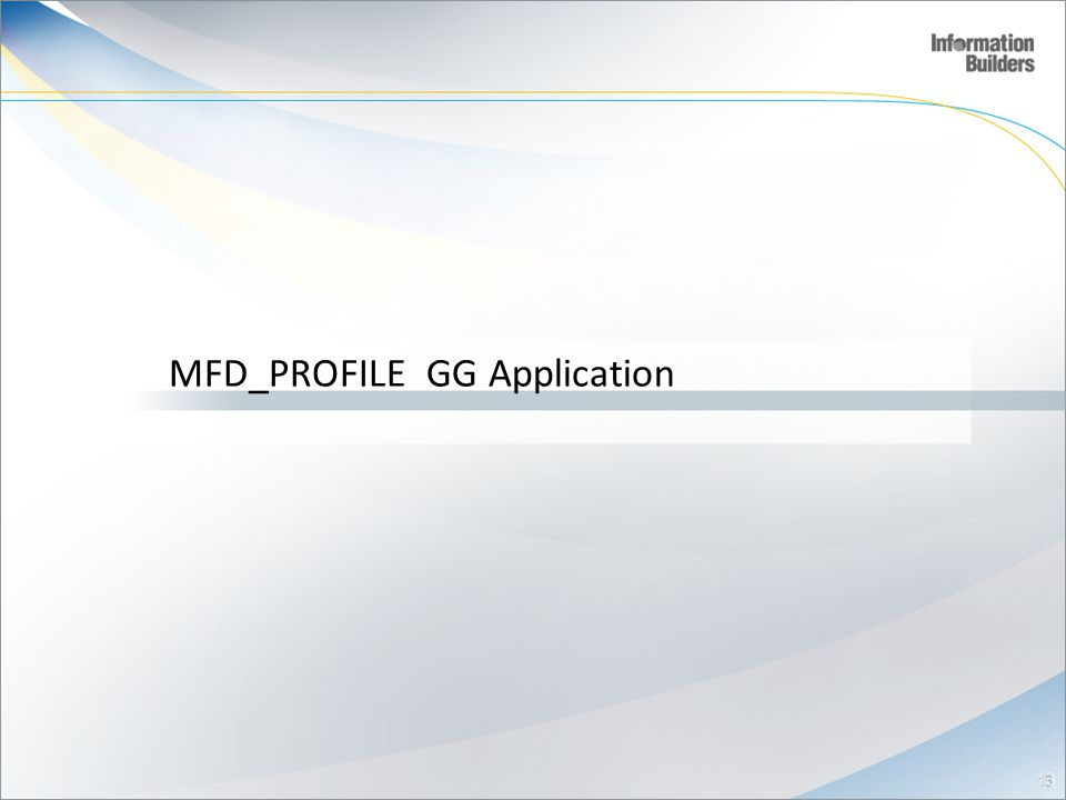 MFD_PROFILE GG Application 13