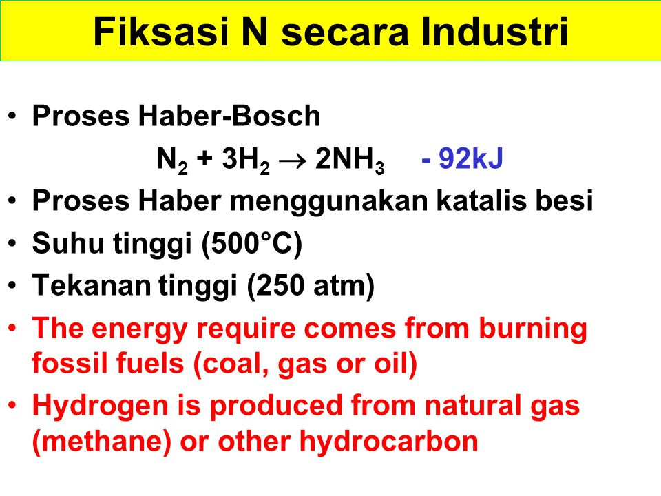 47 Nitrate NO 3 - Atmospheric fixation Out gassin g Plant protein Atmospheric Nitrogen Ammonium NH 4 + Soil organic nitrogen Dampak Kegiatan Manusia Biological fixation Industrial fixation Sumber: © 2008 Paul Billiet ODWS