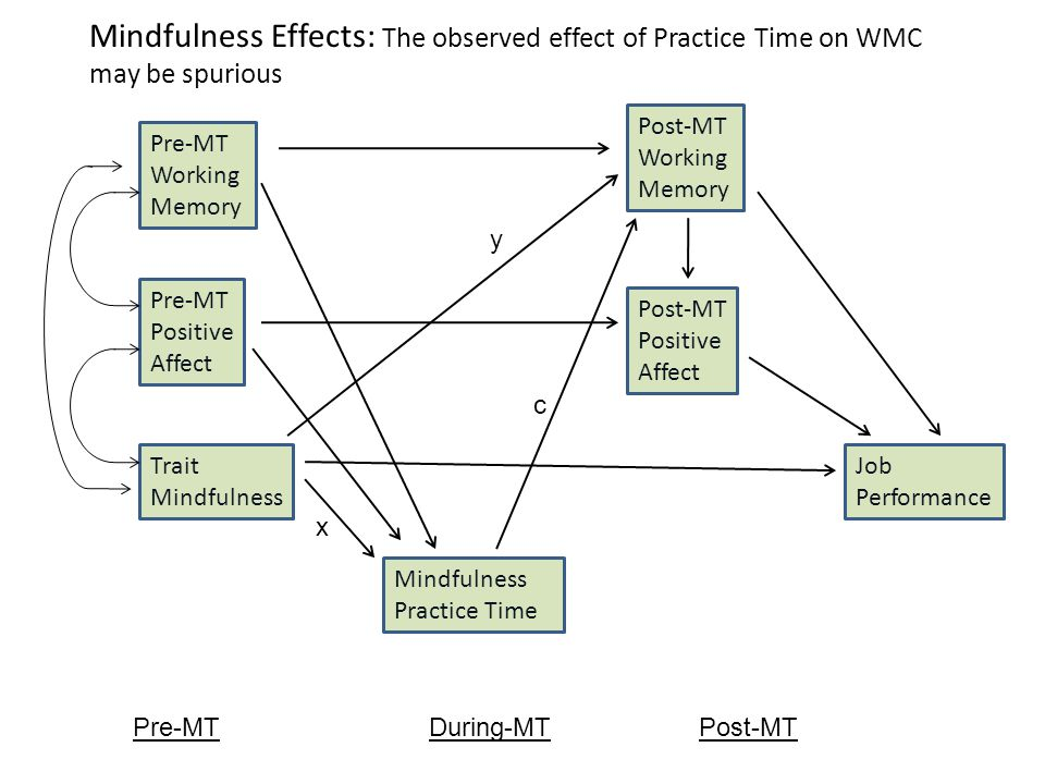 Mindfulness Effects: The observed effect of Practice Time on WMC may be spurious Mindfulness Practice Time Pre-MT Working Memory Pre-MT Positive Affect Post-MT Working Memory Post-MT Positive Affect x y Pre-MT Trait Mindfulness During-MTPost-MT Job Performance c