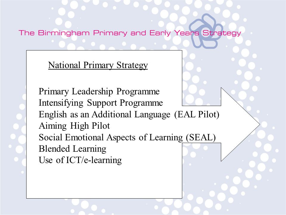 National Primary Strategy Primary Leadership Programme Intensifying Support Programme English as an Additional Language (EAL Pilot) Aiming High Pilot Social Emotional Aspects of Learning (SEAL) Blended Learning Use of ICT/e-learning