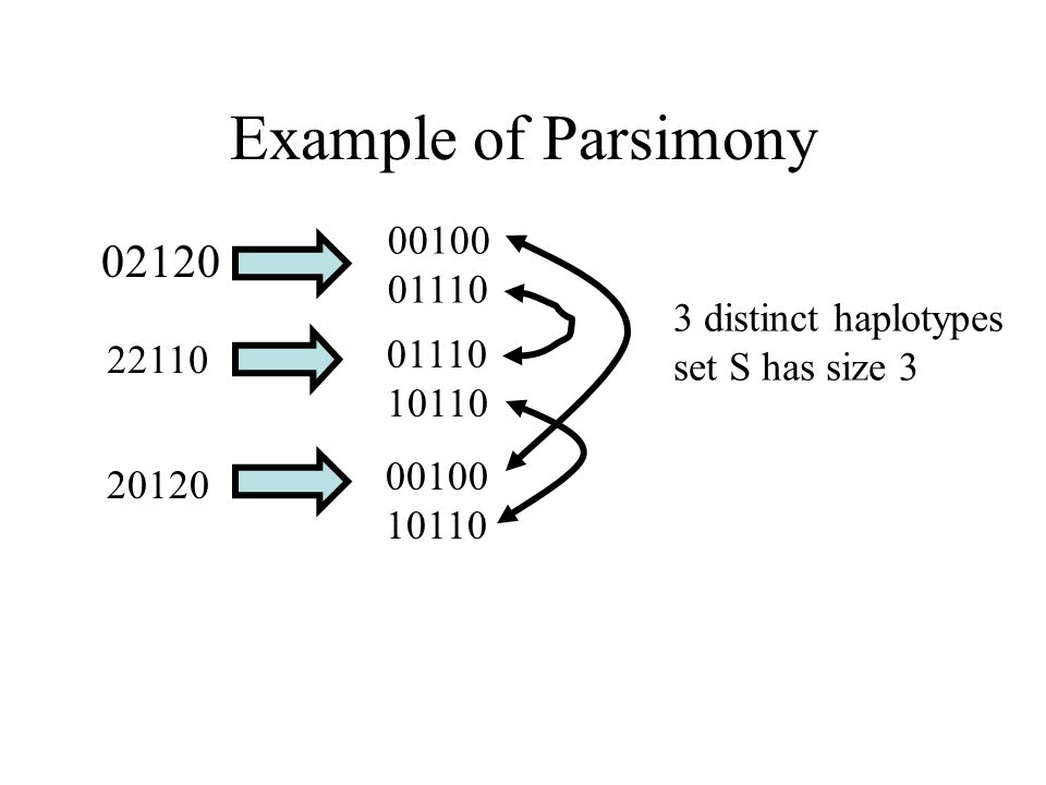 Example of Parsimony 02120 00100 01110 22110 01110 10110 20120 00100 10110 3 distinct haplotypes set S has size 3