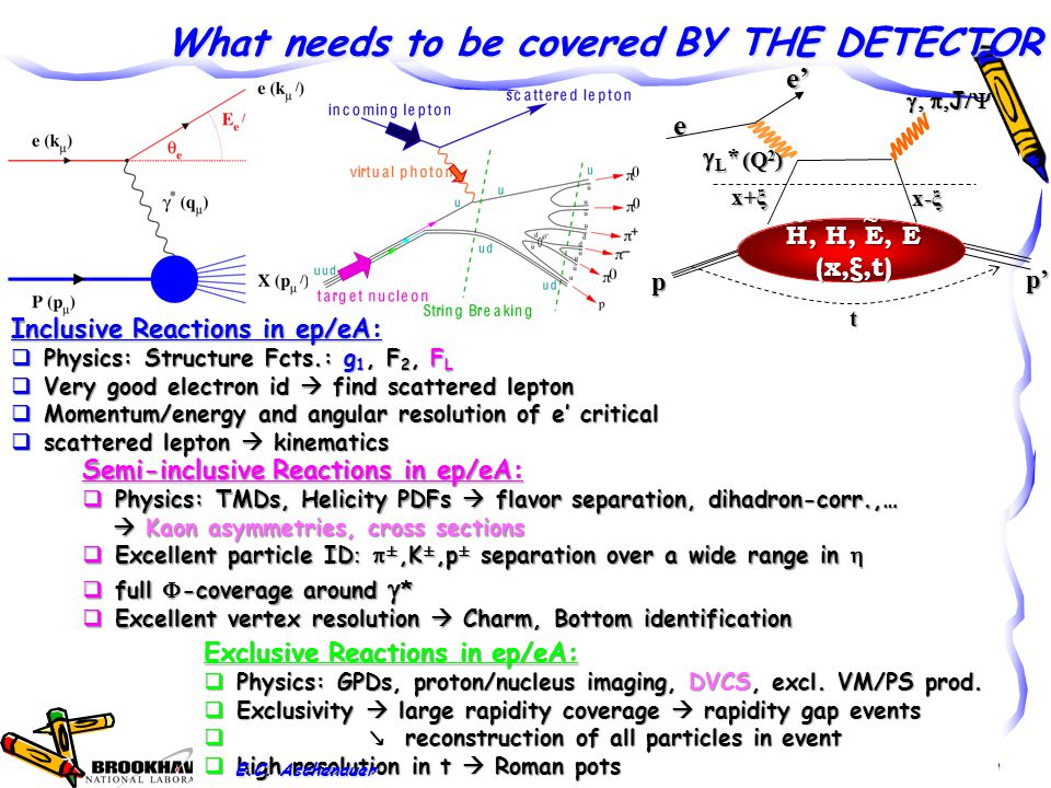 What needs to be covered BY THE DETECTOR 20e't (Q 2 ) e L*L*L*L* x+ξ x-ξ H, H, E, E (x,ξ,t) ~ ~  J  p p' Inclusive Reactions in ep/eA:  Physics: Structure Fcts.: g 1, F 2, F L  Very good electron id  find scattered lepton  Momentum/energy and angular resolution of e' critical  scattered lepton  kinematics Semi-inclusive Reactions in ep/eA:  Physics: TMDs, Helicity PDFs  flavor separation, dihadron-corr.,…  Kaon asymmetries, cross sections  Kaon asymmetries, cross sections  Excellent particle ID  ±,K ±,p ± separation over a wide range in   full  -coverage around  *  Excellent vertex resolution  Charm, Bottom identification Exclusive Reactions in ep/eA:  Physics: GPDs, proton/nucleus imaging, DVCS, excl.