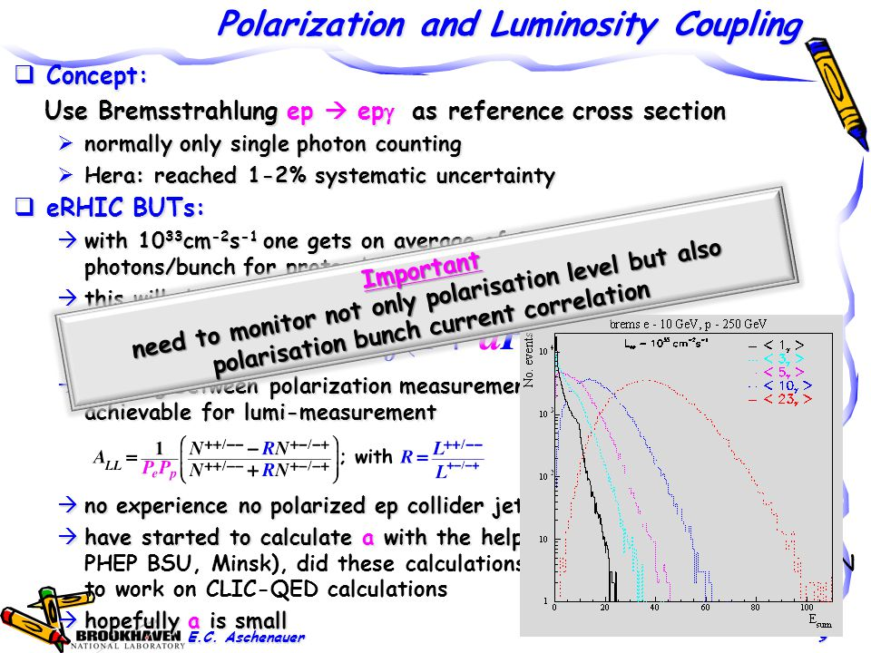 Polarization and Luminosity Coupling  Concept: Use Bremsstrahlung ep  ep  as reference cross section Use Bremsstrahlung ep  ep  as reference cross section  normally only single photon counting  Hera: reached 1-2% systematic uncertainty  eRHIC BUTs:  with 10 33 cm -2 s -1 one gets on average of 23 bremsstrahlungs photons/bunch for proton beam  A-beam Z 2 -dependence  this will challenge single photon measurement under 0 o  coupling between polarization measurement uncertainty and uncertainty achievable for lumi-measurement  no experience no polarized ep collider jet  have started to calculate a with the help of  have started to calculate a with the help of Vladimir Makarenk (NC PHEP BSU, Minsk), did these calculations for ZEUS and is now at CERN to work on CLIC-QED calculations  hopefully a is small E.C.
